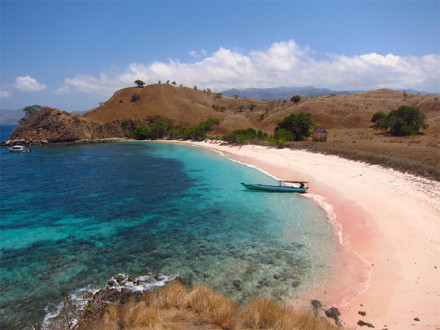 Komodo Live-aboard 4Days/3Nights