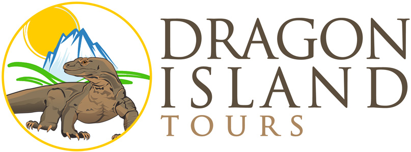 About Dragon Island Tours