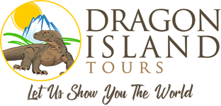 Dragon Island Tours